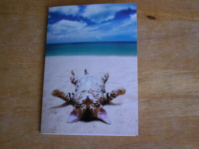 15 Cute Tabby Kitten Tanning On The Beach Blank Note Cards NIB