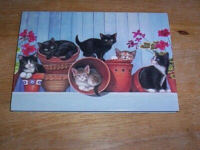 15 Kitten  Kittens In Flower Pots  Blank Note Cards  NIB