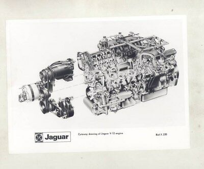 1972 Jaguar XKE V12 Engine Cutaway ORIGINAL Factory Photograph wy4737
