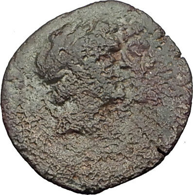 AKE-PTOLEMAIS in PHOENICIA 164BC Authentic Ancient Greek Coin DIOSCURI i64129