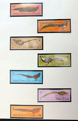 LAOS Birds U/M NB3355