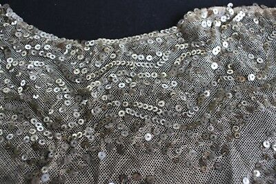 Antique Sequined Tulle Net Lace Collar Remnant