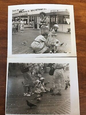 Old Vintage Photos Baby Girls in Sun Bonnets 1940s Mothers Feeding Pigeons