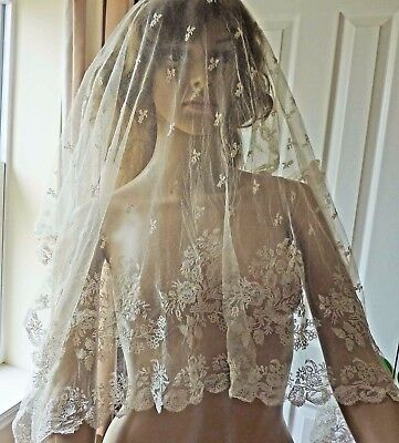 Very Pretty Large Oblong Lace, Veil?