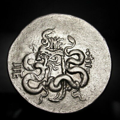 Cistus and the Dionysian crown of fruits. Serpent escapes.RARE Greek Tetradrachm