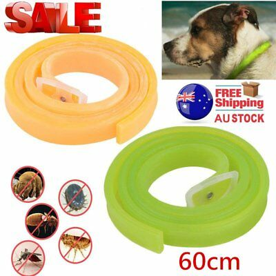 Dog Cat Repel Tick Flea Quick Kill Remover Pet Protection Aroma Neck Collar W0#