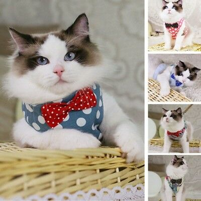 Newly Cat Harness Pet Lovely Chest Vest Breathable Walk Collar Safe Travel Leash