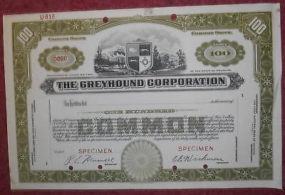 30919 USA-Specimen  The Greyhound Corporation Common Stock certificate