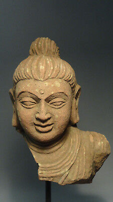 1023=Sandstone Bust of Buddha Gupta period 500-700 A.D North India