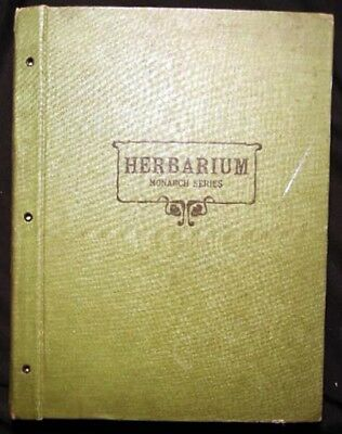 1924 Illinois Plant Herbarium Womans Science Class Botanical 50 Samples