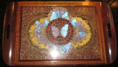 Brazilian Iridescent Butterfly Wing Art Serving Wood Tray Inlay Border 18""