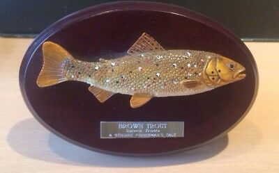 Trophy Brown Trout Fly Fishing.