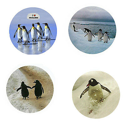 Penguin Magnets: 4 Perky Penguins for your Fridge or Collection-A Great Gift