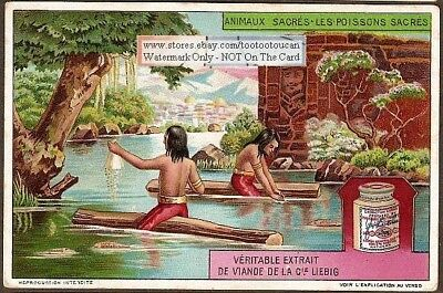 Sacred Andes Indian Fish c1920 Trade Ad Card
