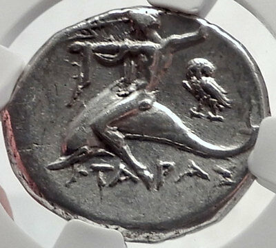 TARENTUM Taras in Calabria 272BC Ancient Silver Greek Stater Coin OWL NGC i64283