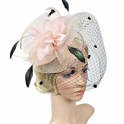 FAYBOX Elegant Silk Flower Feather Dot Net Fascinator Hat Hair Clip BlushPink