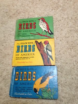 Lot Of 3 Vintage Birds Of America Guide Books-Blue,yellow And Green