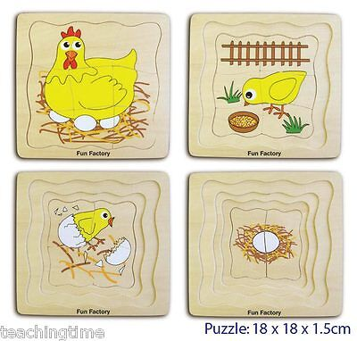 Wooden chicken life cycle puzzle - 4 layers -early learning fun and educational