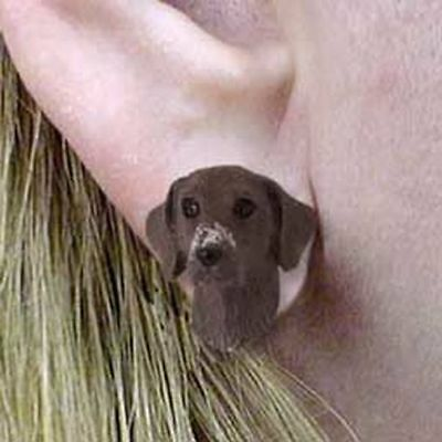 German Shorthaired Pointer Tiny One Dog Head Post Earrings Jewelry