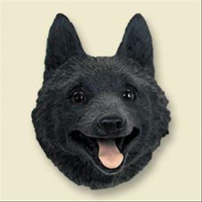 Schipperke Dog Head Painted Stone Resin MAGNET