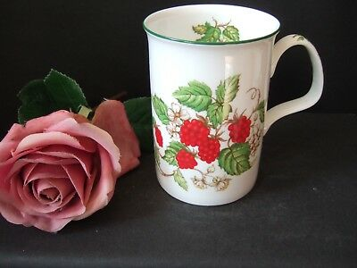 Roy Kirkham Bone China Mug Fruit Garden Design Raspberry 1990