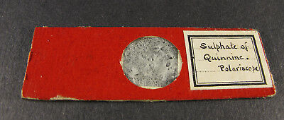 Antique Microscope Slide. Chemical. Sulphate of Quinnine. Polariscope.