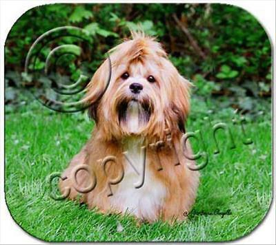 Lhasa Apso Brown Dog Computer MOUSE PAD Mousepad