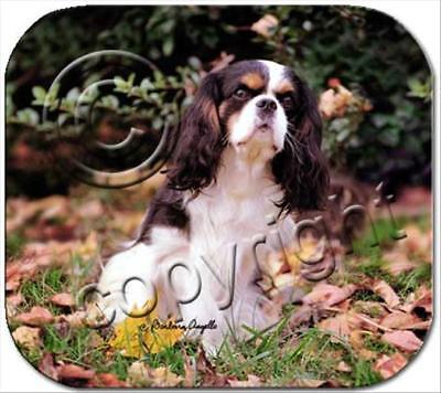 Cavalier King Charles Spaniel Tricolor Dog Computer MOUSE PAD Mousepad