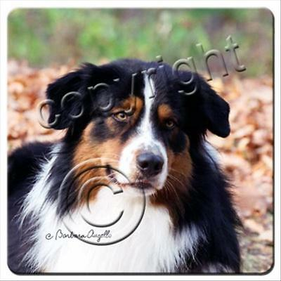 Australian Shepherd Tricolor Dog Rubber Backed Coasters Set of 4