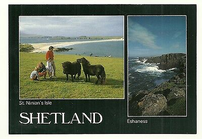Shetland - a large photographic postcard