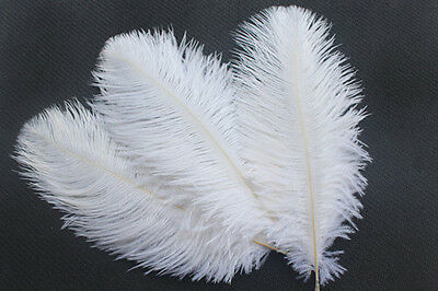 "FEATHERS 5 pcs WHITE Ostrich Feathers Millinery and Crafts  6"" x 8"""