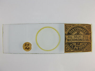 Antique Microscope Slide by Charles Peticolas. Diatom strew.