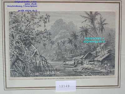 13149-Sri Lanka-Ceylon-TH-1890
