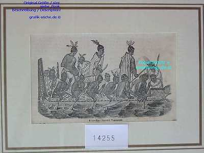 14255-Neuseeland-New Zealand-CANOE-TH-1850