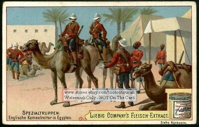 English Troops On Camels In Egypt c1896 Trade Ad Card