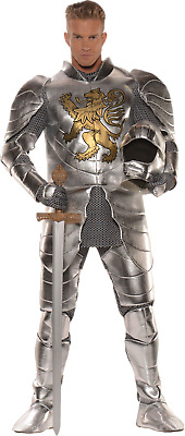Knight in Shining Armor - Adult Costume
