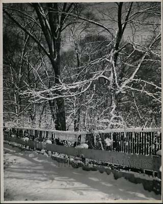 1949 Press Photo Weather, Cold - cvb34562