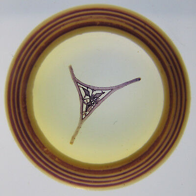 Antique Microscope Slide by W.H.Booth. T.S. Ovary of Begonia. Dated 1888.