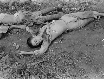 WW2  Photo WWII Deceased Japaneses  Soldiers Pacific PTO  World War Two / 2425R