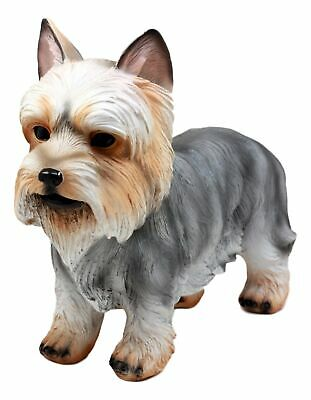 "Groomed Adorable Yorkshire Terrier Dog Statue 7.75""L Realistic Yorkie Figurine"