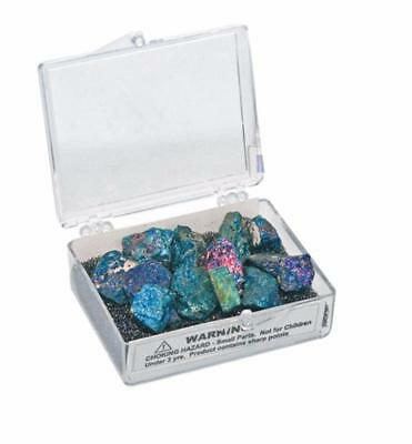 Peacock Chalcopyrite Mineral Specimen Collection Kit
