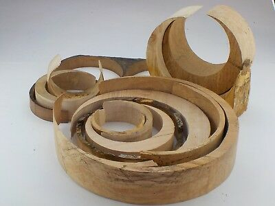 Box of 13 circular wood offcuts / shapes.  Jewellery display, art & craft.  1251