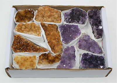 Wholesale Bulk Citrine & Amethyst Crystal Clusters: 9-15 Piece Lot