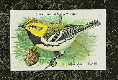 1938 Black-throated Green Warbler Cow Brand Soda 10th Series Card 2 Useful Birds