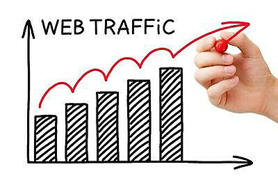 Lifetime REAL Traffic for 1 Website - 100% Human - SEO & ALEXA Safe + Analytics
