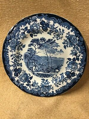 Palissy Blue And White Plate