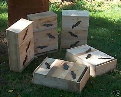 Bat House.1=6 chamber.+birth chamber. Apx holds 200  little browns. by .M.HOLLEY