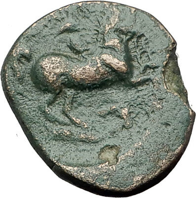 Philip II 359BC Olympic Games HORSE Race WIN Macedonia Ancient Greek Coin i64550