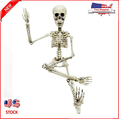 Poseable Skeleton Figure Full Size Life-Sized Halloween Outdoor Decoration Prop