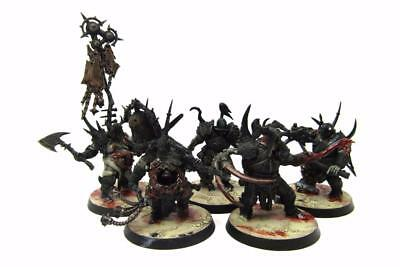 Warhammer Fantasy Age Of Sigmar Nurgle Rotbringers Blight Kings Regiment (w5108)